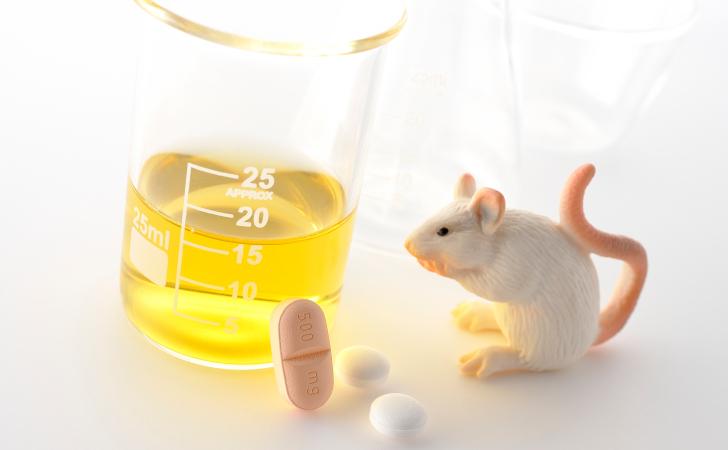 ネズミと薬